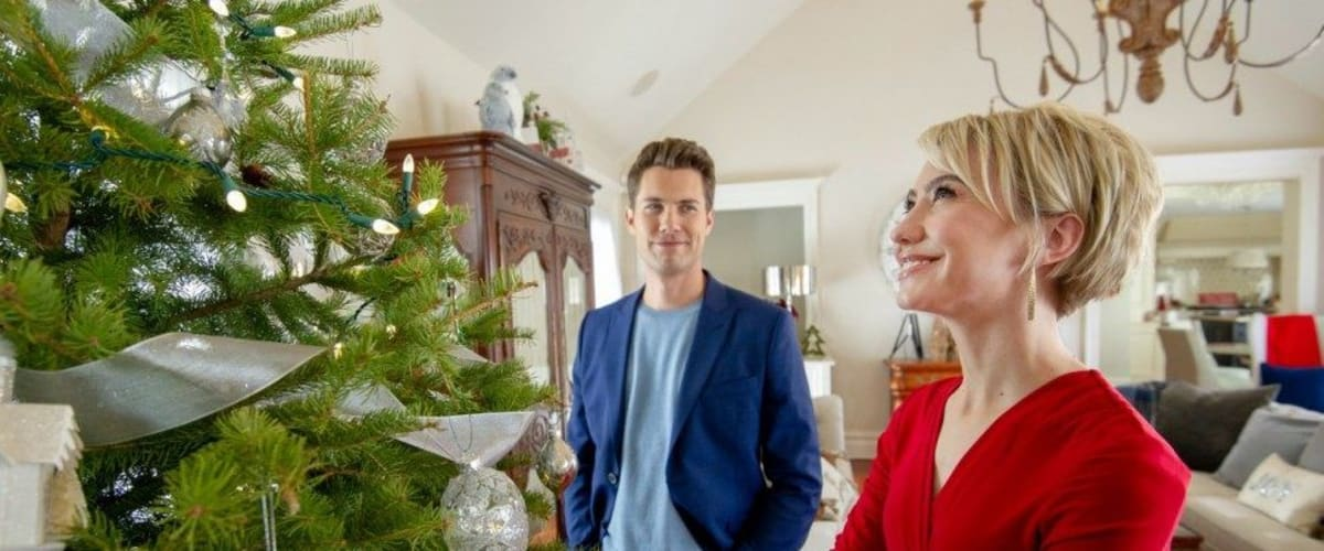 Watch A Christmas for the Books