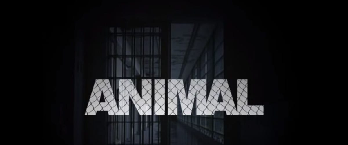 Watch Animal