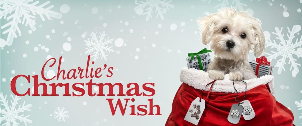 Watch Charlie's Christmas Wish
