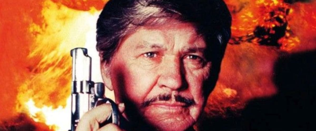Watch Death Wish V: The Face of Death