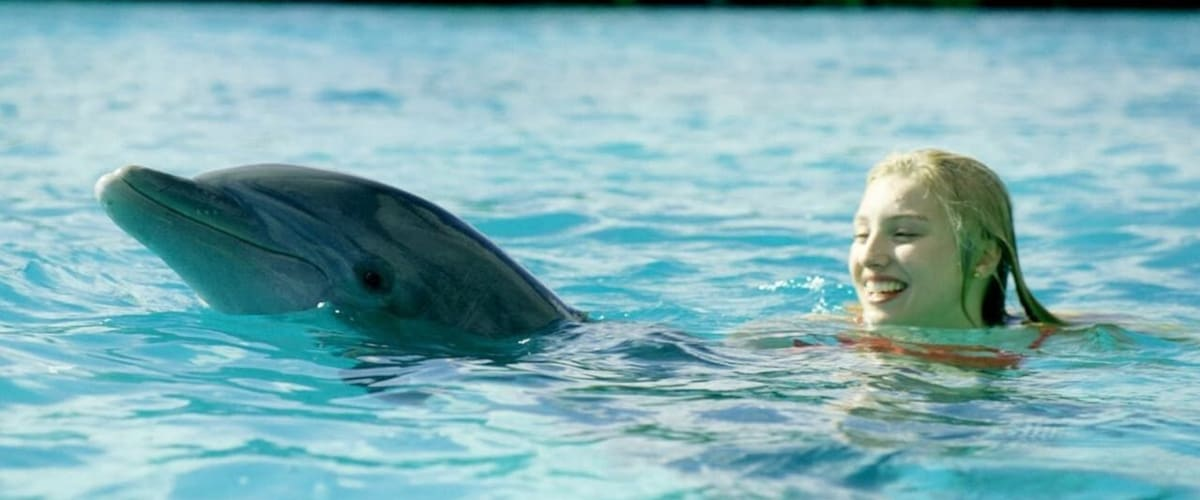 Watch Dolphin Island