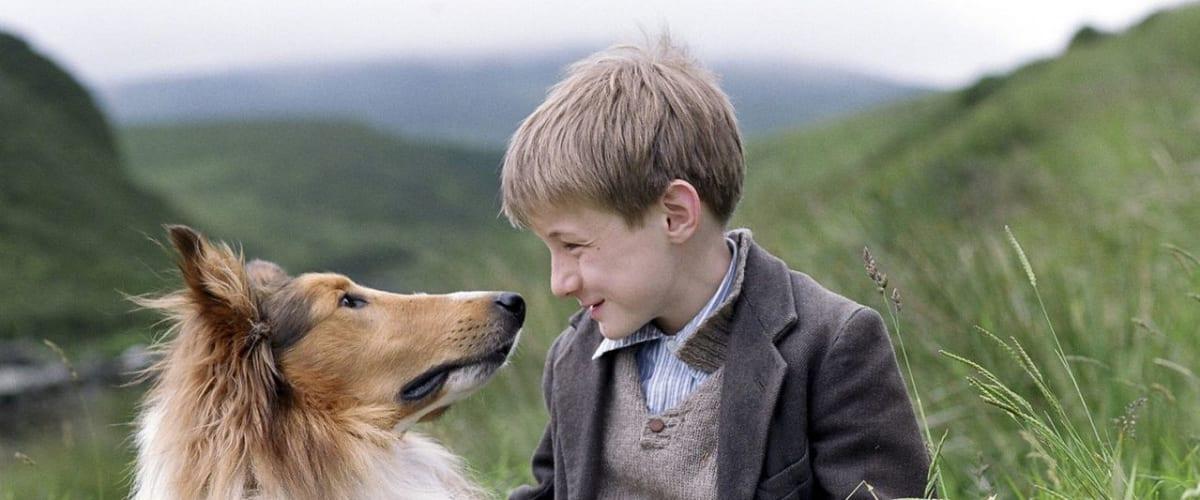 Watch Lassie