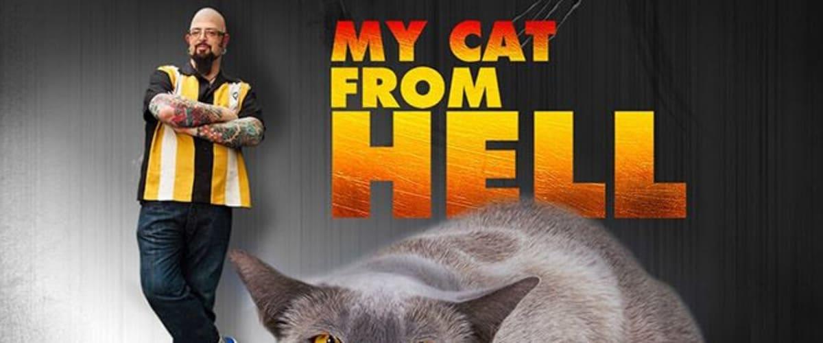 Watch My Cat From Hell - Season 8