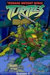Teenage Mutant Ninja Turtles - Season 01