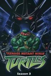 Teenage Mutant Ninja Turtles - Season 03