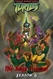 Teenage Mutant Ninja Turtles - Season 05