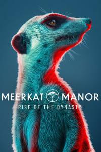 2046   Watch Movies Online