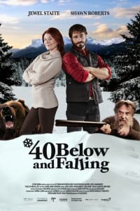 40 Below and Falling | Bmovies