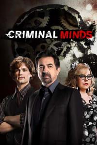 Criminal Minds - Season 15 | Bmovies
