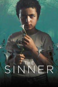 The Sinner - Season 3 | Bmovies
