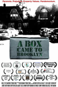 A Box Came To Brooklyn | Bmovies