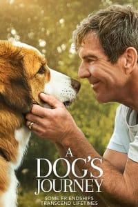 A Dog's Journey | Bmovies