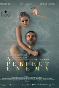 A Perfect Enemy | Bmovies