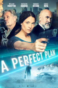 A Perfect Plan | Watch Movies Online