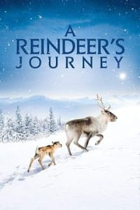 A Reindeer's Journey | Watch Movies Online