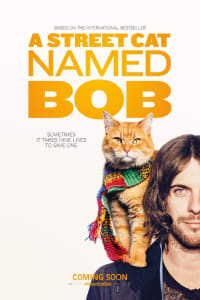 A Street Cat Named Bob | Bmovies