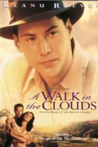 A Walk In The Clouds | Bmovies