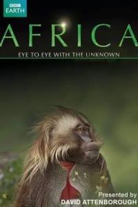 Africa (2013) - Season 01 | Bmovies