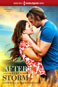 After the Storm | Bmovies