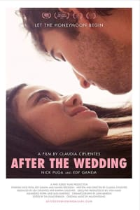 After the Wedding | Bmovies