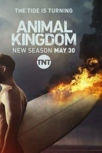 Animal Kingdom - Season 2 | Bmovies