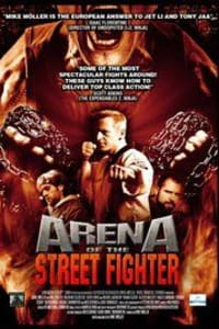 Arena of the Street Fighter | Bmovies