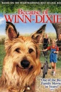 Because of Winn-Dixie | Bmovies