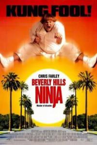 Beverly Hills Ninja | Bmovies