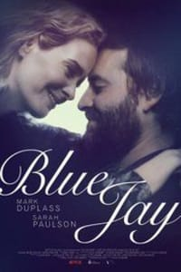 Blue Jay   Bmovies