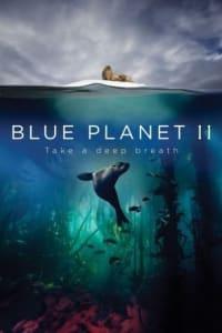 Blue Planet II - Season 01 | Bmovies