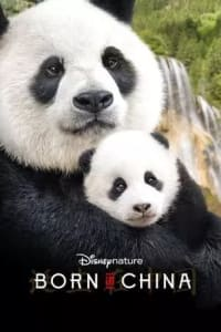 Born in China | Bmovies