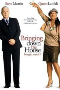 Bringing Down the House | Watch Movies Online