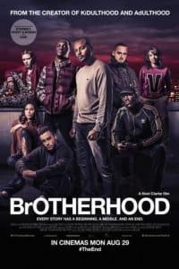 Brotherhood   Bmovies