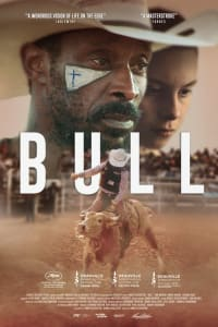 Bull | Watch Movies Online
