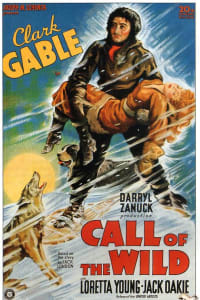 Call of the Wild | Bmovies