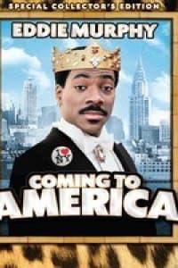 Coming To America | Bmovies