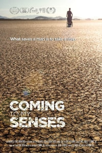 Coming to My Senses | Bmovies