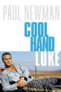 Cool Hand Luke | Bmovies