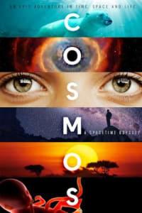 Cosmos: A Spacetime Odyssey - Season 01 | Bmovies