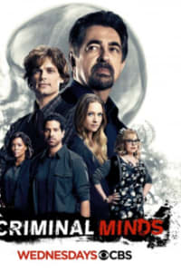 Criminal Minds - Season 12 | Bmovies