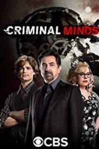 Criminal Minds - Season 14 | Bmovies