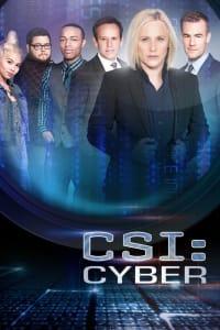 CSI: Cyber - Season 2   Bmovies