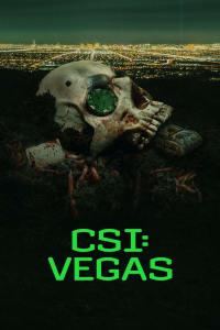 CSI: Vegas - Season 1   Watch Movies Online