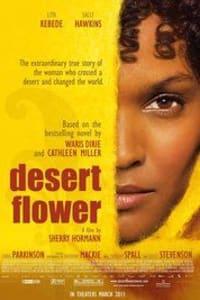 Desert Flower | Bmovies