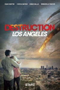 Destruction Los Angeles   Bmovies