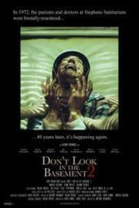 Dont Look In The Basement 2 | Bmovies