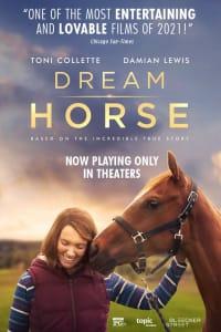 Dream Horse | Bmovies