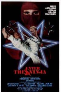 Enter The Ninja | Bmovies
