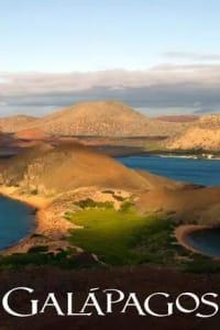 Galapagos - Season 01 | Bmovies