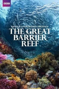 Great Barrier Reef with David Attenborough - Season 01 | Bmovies